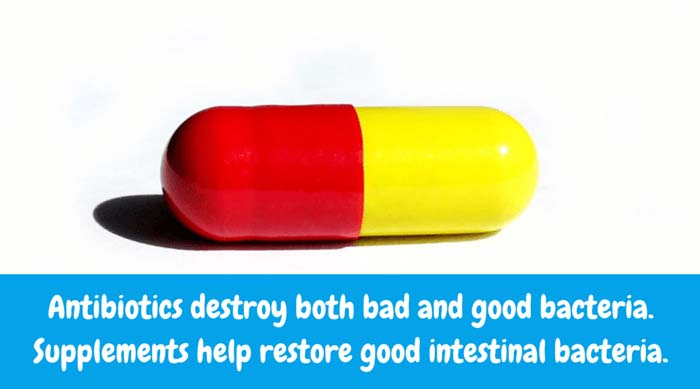 Antibiotics destroy both bad and good bacteria. Supplements help restore good intestinal bacteria.