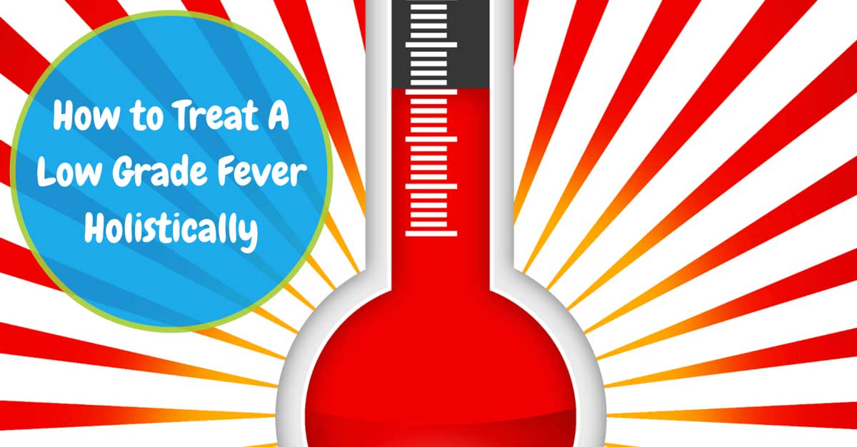 How To Treat Low Grade Adult Fever 82